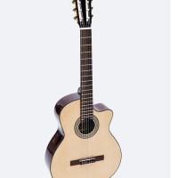 Classic Guitar DC170J