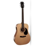 Acoustic Cort AD810E