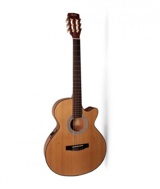 Classic guitar Cort CEC1