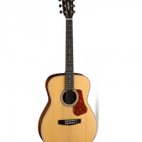 Guitar acoustic L100C