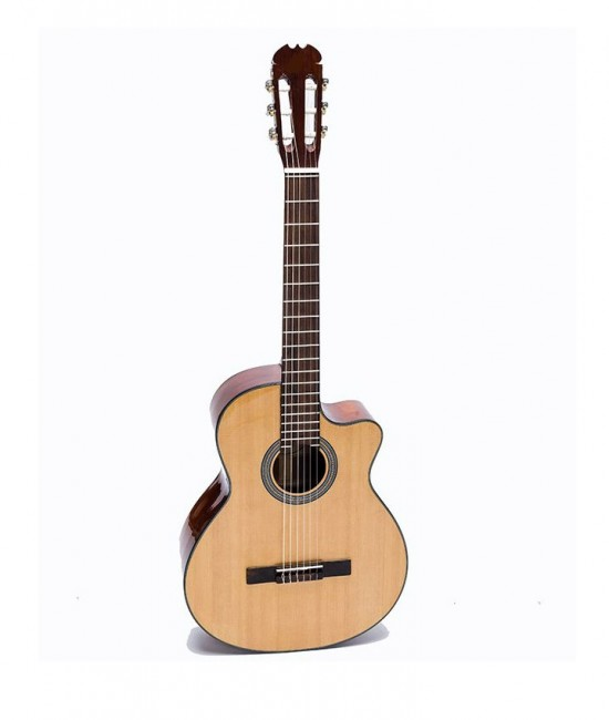 Guitar Classic DC100J