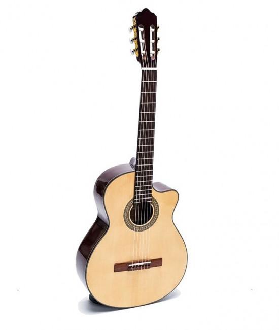 Guitar Classic DC150J