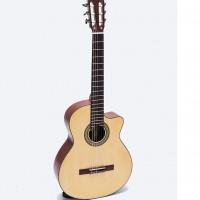 Đàn Guitar Classic DC300J