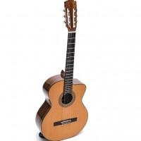 Guitar Classic DC550D