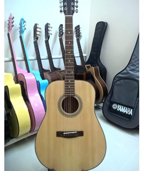Acoustic Guitar DD100