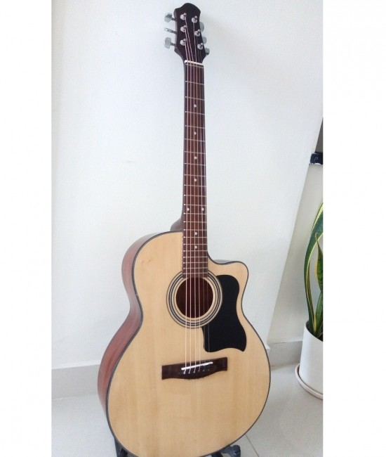 Guitar acoustic DJ100