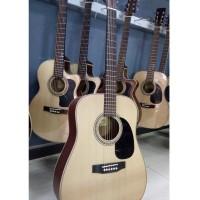 Acoustic Guitar DD200