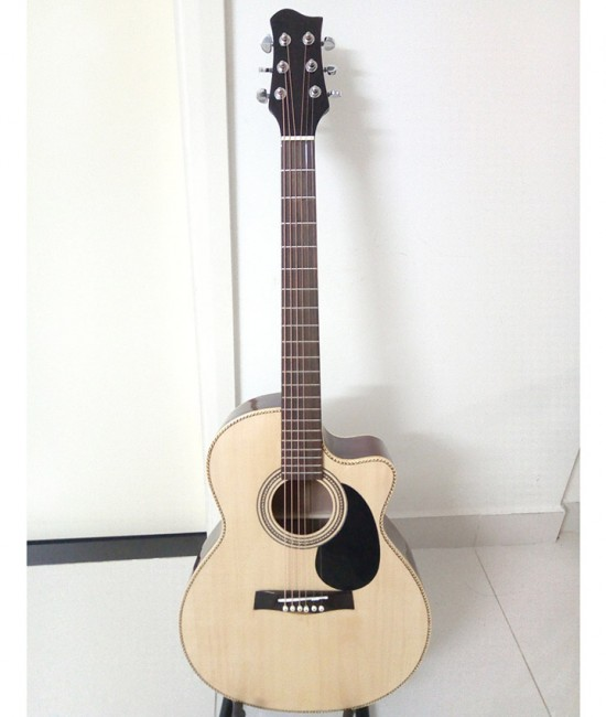 Acoustic Guitar DJ130