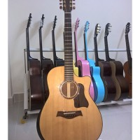Acoustic Guitar DT450 EQ