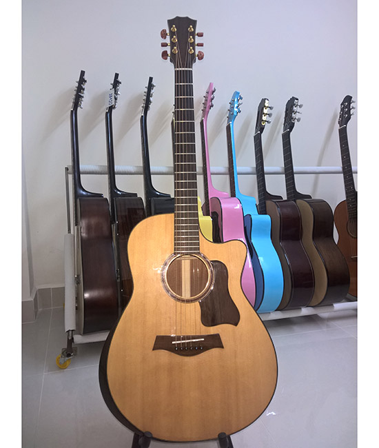Acoustic Guitar DT450 EQ
