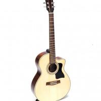 Guitar Acoustic DJ150