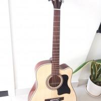 Acoustic Guitar DJ200