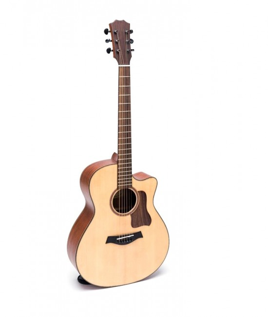 Guitar Acoustic DT350
