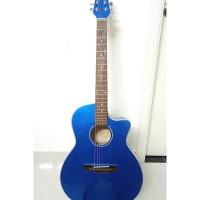 Acoustic guitar DVE85J blue
