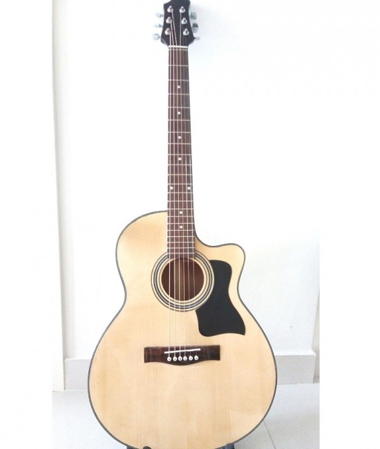 Acoustic guitar DJ120